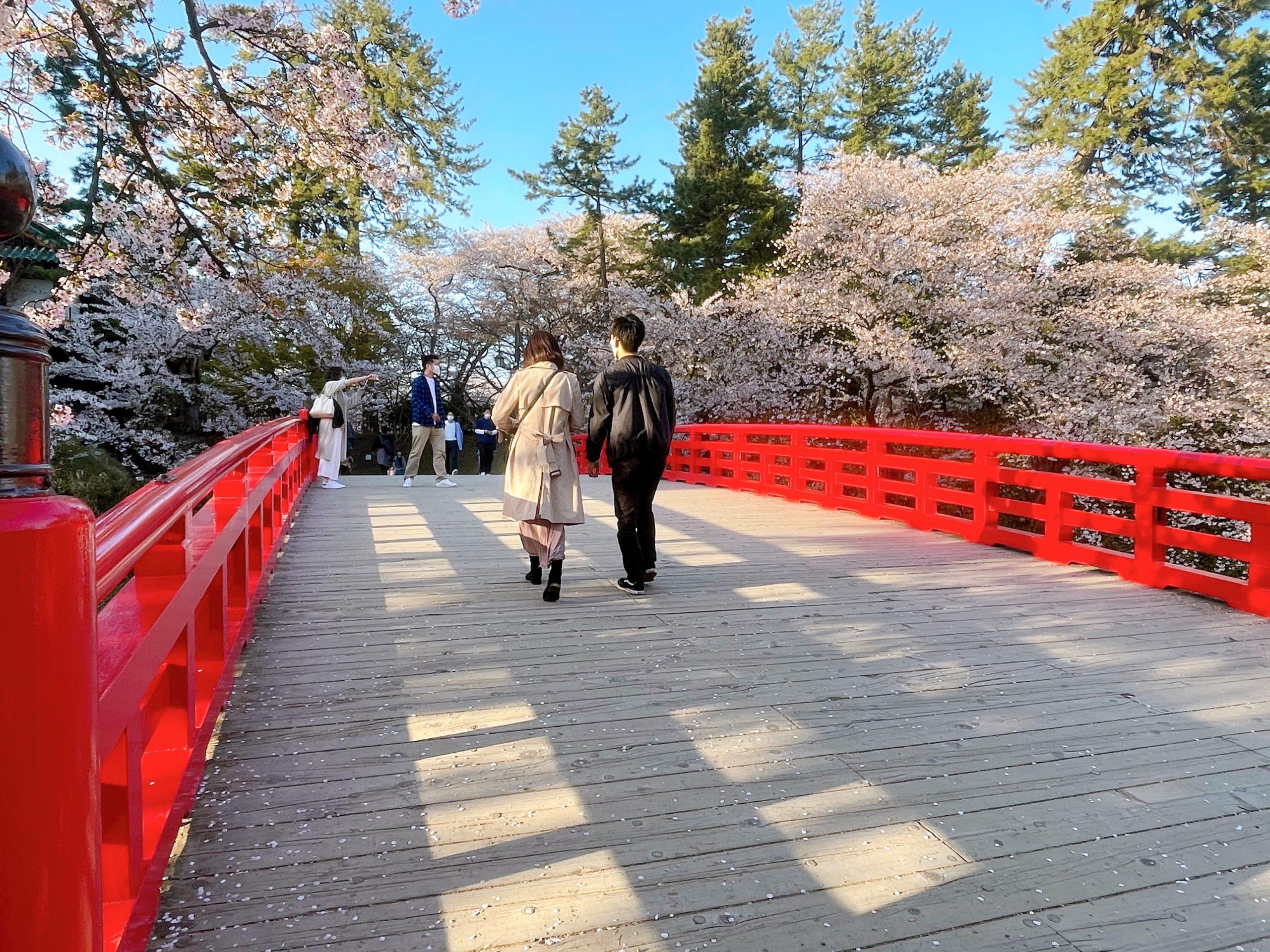 桜祭りといったら!「弘前さくらまつり2021」