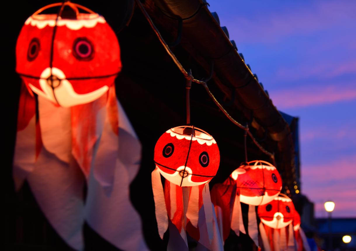 【弘前市】山口県の『金魚ちょうちん』と、青森県の『金魚ねぷた』の展示会が行われています!
