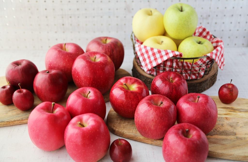 ~季節ごとの旬の味覚を楽しみながら学ぼう~  『青森りんごがもっと食べたくなる講座』が開催されます!